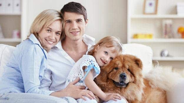 Wills & Trusts dog-young-family Direct Wills Twyford